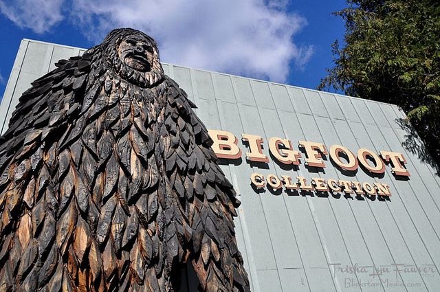 KQED uses Willow Creek Bigfoot Museum Photo
