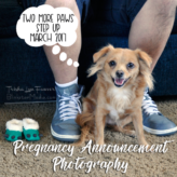 Pregnancy Announcement Photos: Two More Paws